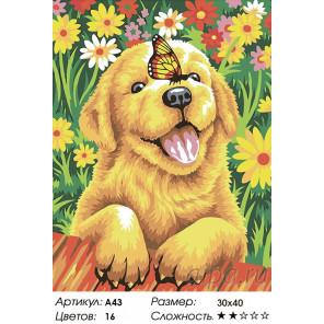 Щенок садовник Раскраска по номерам акриловыми красками на холсте Живопись по номерам