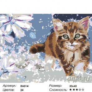 1 Котенок Раскраска по номерам на холсте Живопись по номерам