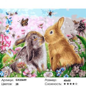 Количество цветов и сложность Два зайчонка Раскраска по номерам на холсте GX23659