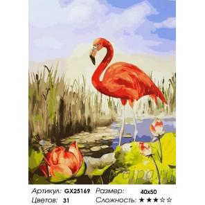 Красный фламинго Раскраска по номерам на холсте GX25169