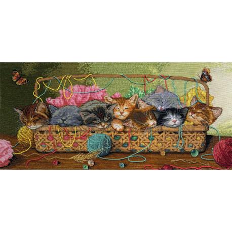 Новорожденные котята 35184 Набор для вышивания Dimensions ( Дименшенс )