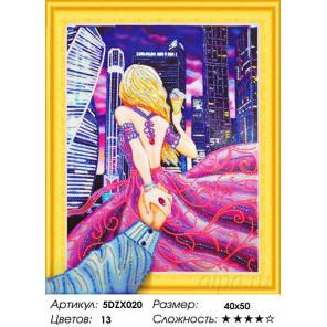 Следуй за мной в мегаполис Алмазная вышивка мозаика 5D 5DZX020