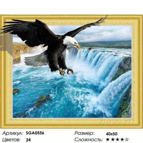 Белоголовый орлан Алмазная вышивка мозаика 3D SGA0556
