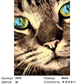 Удивительные глаза Раскраска по номерам на холсте Живопись по номерам A414