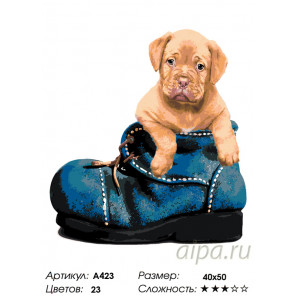 Количество цветов и сложность В ботинке Раскраска по номерам на холсте Живопись по номерам A423