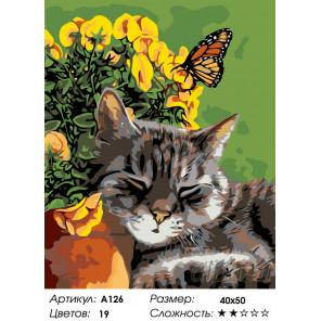 Количество цветов и сложность Полуденный сон Раскраска по номерам на холсте Живопись по номерам A126