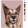 Схема Служебный пес Раскраска по номерам на холсте Живопись по номерам A223