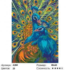 Количество цветов и сложность Пара павлинов Раскраска по номерам на холсте Живопись по номерам A284