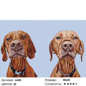Количество цветов и сложность Братья псы Раскраска по номерам на холсте Живопись по номерам A303