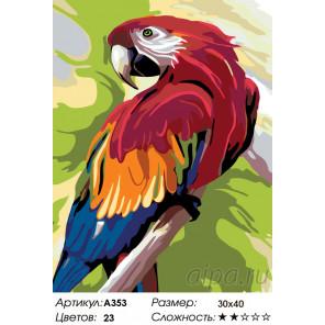 Количество цветов и сложность Говорящий попугай Раскраска по номерам на холсте Живопись по номерам A353