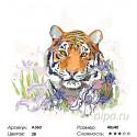Количество цветов и сложность Тигрица в ирисах Раскраска по номерам на холсте Живопись по номерам A360
