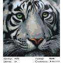 Количество цветов и сложность Мудрый тигр Раскраска по номерам на холсте Живопись по номерам A373