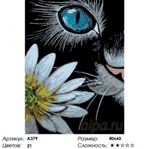 Одним глазком Раскраска по номерам на холсте Живопись по номерам A379