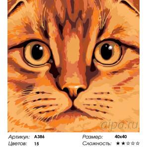 Количество цветов и сложность Рыжая морда Раскраска по номерам на холсте Живопись по номерам A386