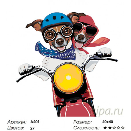 Количество цветов и сложность Парочка на мотоцикле Раскраска по номерам на холсте Живопись по номерам A401
