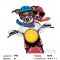 Парочка на мотоцикле Раскраска по номерам на холсте Живопись по номерам