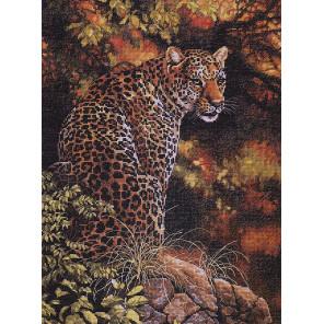 Взгляд леопарда 35209 Набор для вышивания Dimensions ( Дименшенс )
