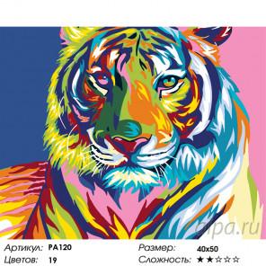 Радужная голова тигра Раскраска по номерам на холсте Живопись по номерам PA120
