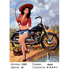 Количество цветов и сложность Мотоциклистка Раскраска по номерам на холсте Живопись по номерам Z3201