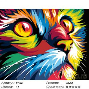 Количество цветов и сложность Радужная мордочка кота Раскраска по номерам на холсте Живопись по номерам PA02