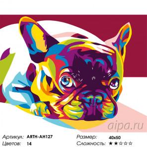 Количество цветов и сложность Радужный французский бульдог Раскраска по номерам на холсте Живопись по номерам ARTH-AH127