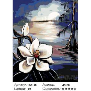 Количество цветов и сложность Лунный цветок Раскраска по номерам на холсте Живопись по номерам RA135
