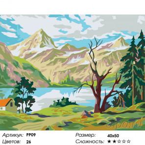 Количество цветов и сложность Уединение в горах Раскраска по номерам на холсте Живопись по номерам PP09