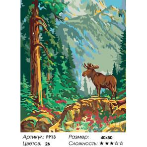 Количество цветов и сложность Лось в лесу Раскраска по номерам на холсте Живопись по номерам PP13