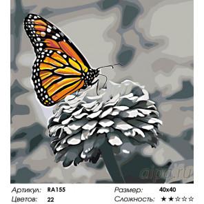 Прекрасная бабочка Раскраска по номерам на холсте Живопись по номерам RA155