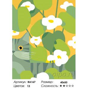 Количество цветов и сложность Кот на прогулке Раскраска по номерам на холсте Живопись по номерам RA167