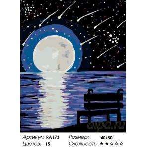 Количество цветов и сложность Звездный дождь Раскраска по номерам на холсте Живопись по номерам RA173