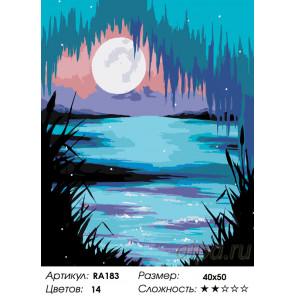 Количество цветов и сложность Волшебная луна Раскраска по номерам на холсте Живопись по номерам RA183
