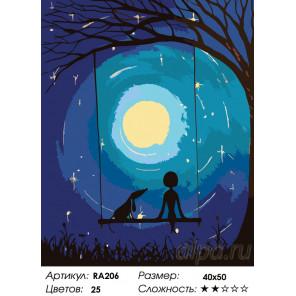 Количество цветов и сложность Лунные качели Раскраска по номерам на холсте Живопись по номерам RA206