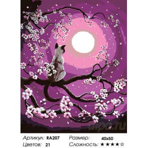 Количество цветов и сложность Любуясь луной Раскраска по номерам на холсте Живопись по номерам RA207