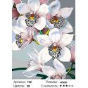 Количество цветов и сложность Стильные орхидеи Раскраска по номерам на холсте Живопись по номерам F45