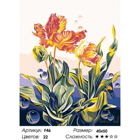 F46 Ажурные тюльпаны Раскраска по номерам на холсте ...