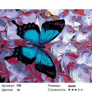 Количество цветов и сложность Морфо на фиалках Раскраска по номерам на холсте Живопись по номерам F58
