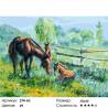 Количество цветов и сложность Полуденный зной Раскраска картина по номерам на холсте Белоснежка 274-AS