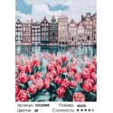 Количество цветов и сложность Весенний Амстердам Раскраска по номерам на холсте GX25449