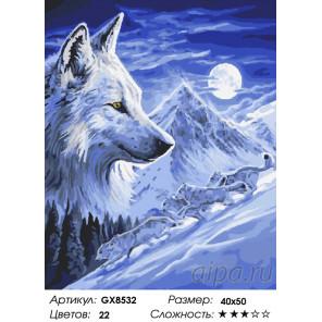 Количество цветов и сложность Одинокий волк Раскраска по номерам на холсте GX8532