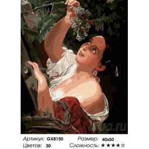 Количество цветов и сложность Магия царства Раскраска по номерам на холсте GX8150