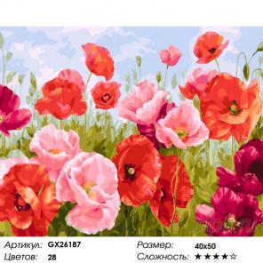 Количество цветов и сложность Поле маков Раскраска по номерам на холсте GX26187