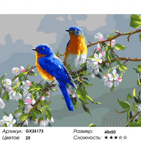Количество цветов и сложность На цветущей ветке Раскраска по номерам на холсте GX26173