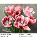 Алые тюльпаны Раскраска по номерам на холсте
