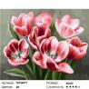 Количество цветов и сложность Алые тюльпаны Раскраска по номерам на холсте GX26071
