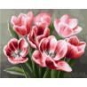 Алые тюльпаны Раскраска по номерам на холсте GX26071