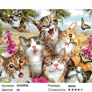 Количество цветов и сложность Улыбки котиков Раскраска по номерам на холсте GX25935