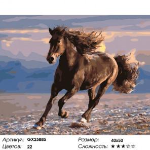 Количество цветов и сложность Бег лошади Раскраска по номерам на холсте GX25885