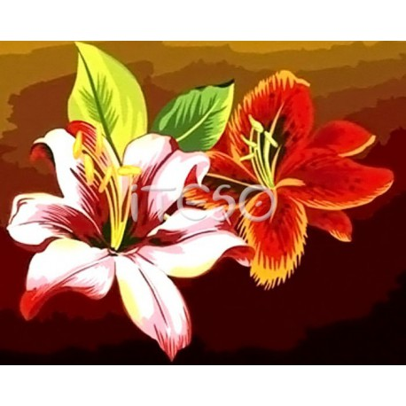 Цветы лилии Раскраска по номерам акриловыми красками на холсте Iteso