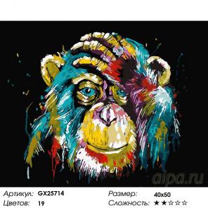 Количество цветов и сложность Радужная обезьяна Раскраска по номерам на холсте GX25714